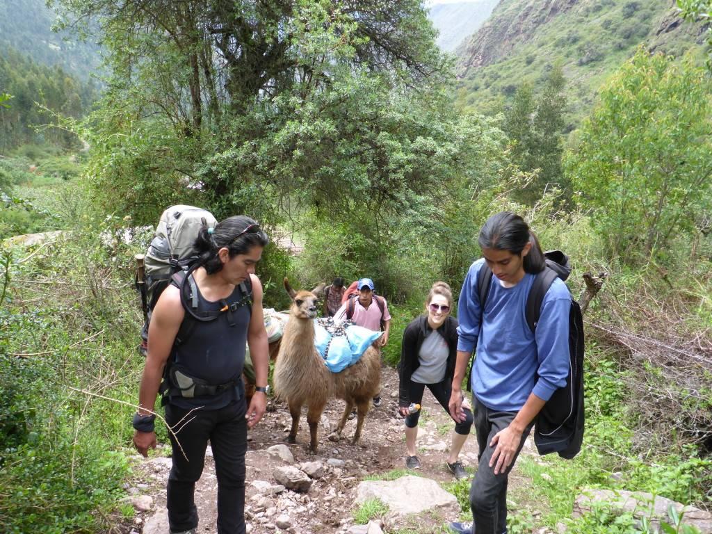 Peru Internships