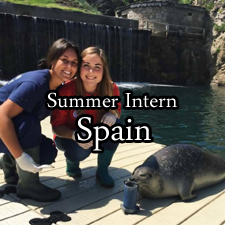 Intern in Spain